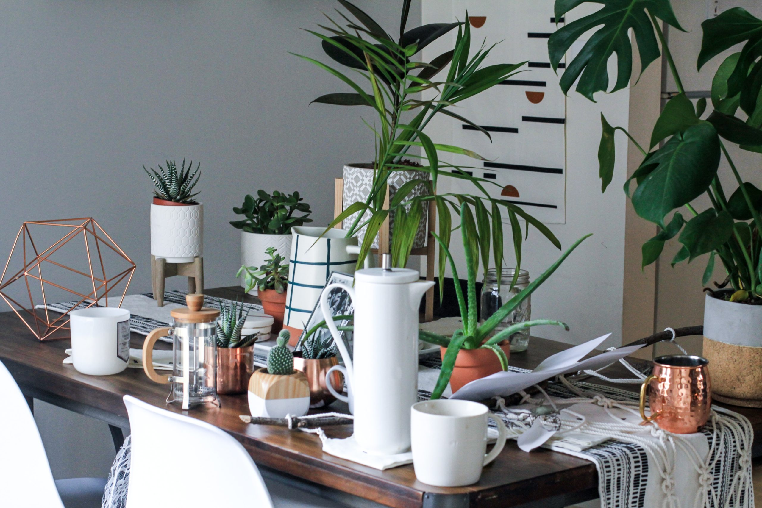Plant Stands Ideas To Decorate Your Indoor & Outdoor Space